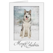 Husky Christmas Cards