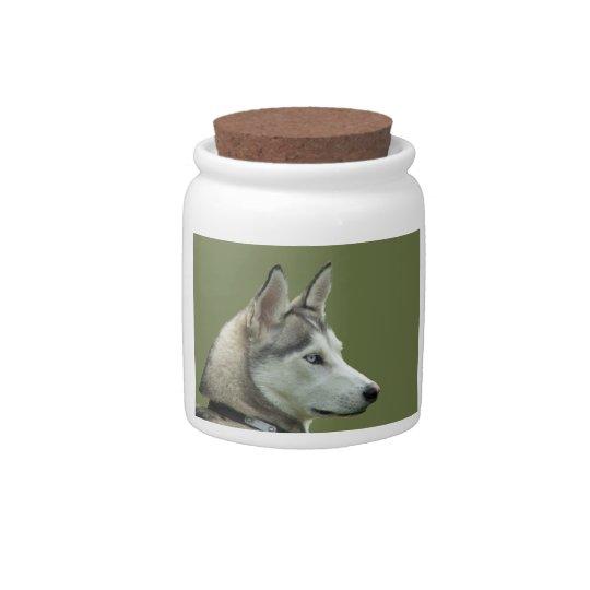 Husky dog beautiful photo portrait, gift candy jar