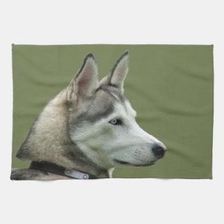Husky dog beautiful photo potrait, gift hand towels