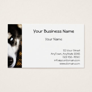 Husky Dog Blue Eye Border Business Card