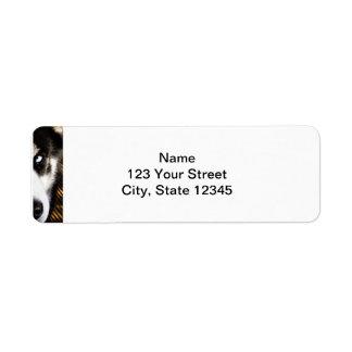 Husky Dog Blue Eye Border Label