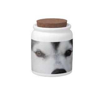 Husky Dog  Candy Jar