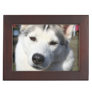 Husky Dog Keepsake Boxes