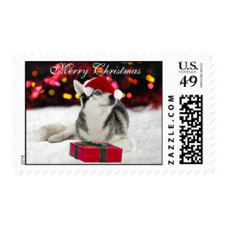 Husky dog santa hat snow custom Christmas postage