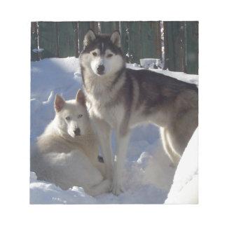 Husky Dogs 'Best Friends' Notepad