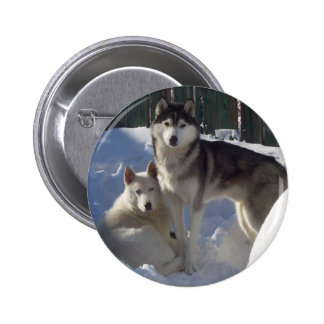 Husky Dogs 'Best Friends' Pinback Button