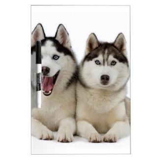 Husky Dogs Dry-Erase Board