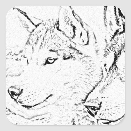 Husky dogs square sticker