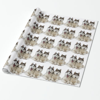 Husky Dogs Wrapping Paper