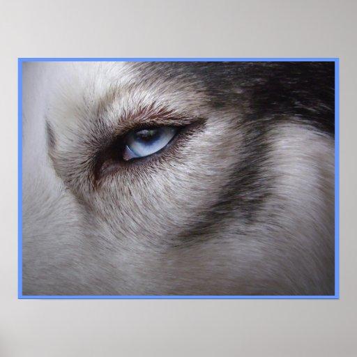 Husky Eye Poster Sled Dog Art Poster Husky Gifts