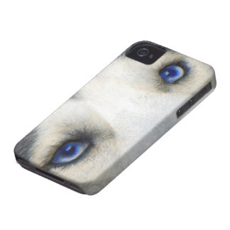 Husky Eyes iphone iPhone 4 Case-Mate Case