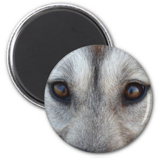 Husky Fridge MagnetSled Dog Wolf Magnet / Gift