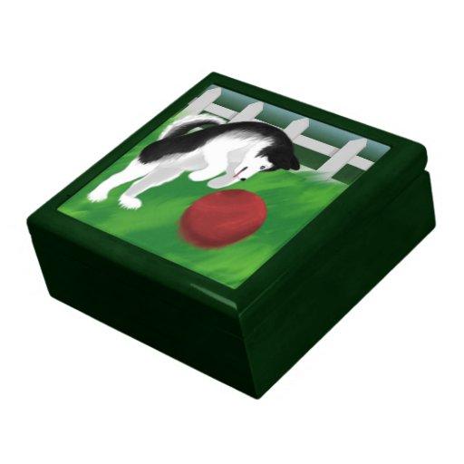 Husky Gift Box