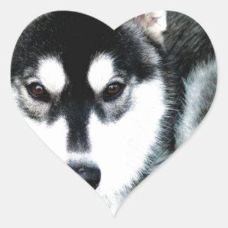 Husky Heart Sticker