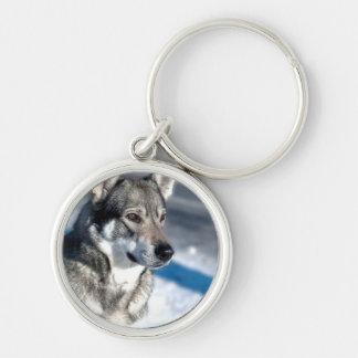 Husky in Snow Keychain