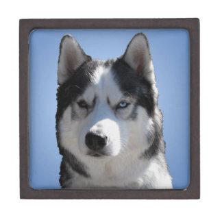 Husky Jewelry Box Husky Sled Dog Eyes Gift Box Premium Gift Boxes