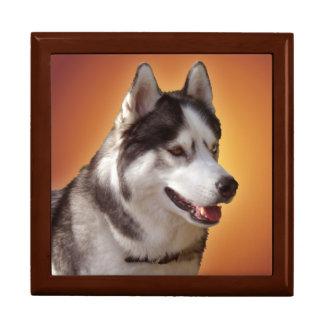 Husky Jewelry Box Siberian Husky Sled Dog Boxes