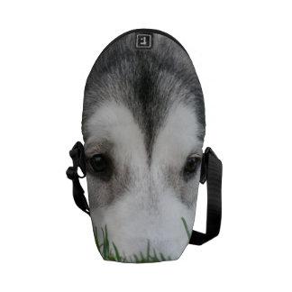 Husky Courier Bag