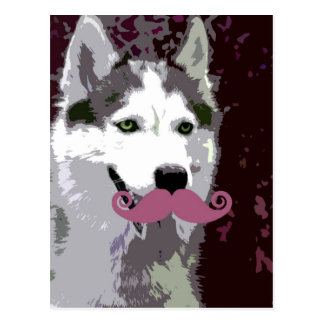 Husky Mustache Postcard