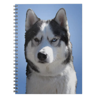 Husky Notebook Siberian Husky Journal Sleddog Book