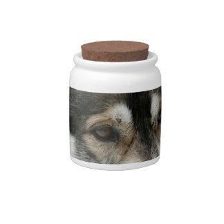 Husky Pet Dog Candy Dish