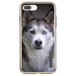 Incipio DualPro Shine iPhone 7 Plus Case with Siberian Husky Phone Cases design