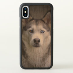 Carved Apple iPhone X Bumper Wood Case with Siberian Husky Phone Cases design