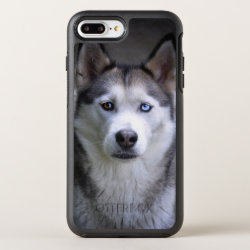 Husky portrait OtterBox symmetry iPhone 8 plus/7 plus case