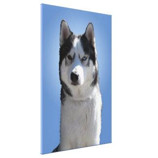 Husky Print Stretched Husky Malamute Dog Canvas