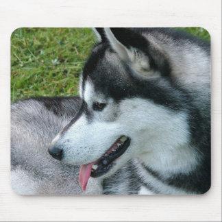 Husky Profile  Mouse Pad