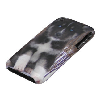 Husky Pup Case-Mate iPhone 3 Cases