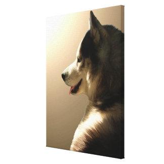 Husky Pup Print Husky Puppy Canvas Print