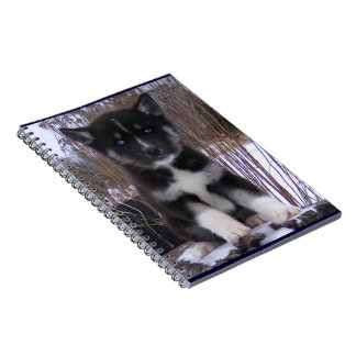 Husky Pup Spiral Notebook