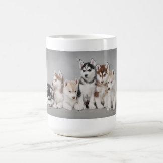 Husky puppies classic white coffee mug