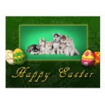 Husky puppies Easter Postcard