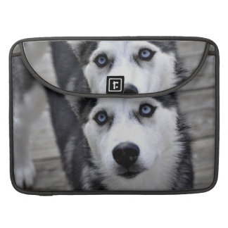 "Husky Puppy 15"" MacBook Sleeve MacBook Pro Sleeves"