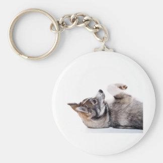 husky puppy basic round button keychain