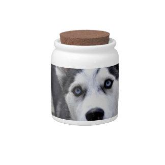 Husky Puppy Candy Jar