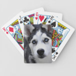 Husky Puppy Deck of Cards Bicycle Playing Cards
