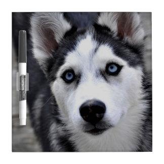 Husky Puppy Dry Erase Board