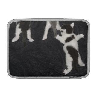 Husky Puppy MacBook Sleeves