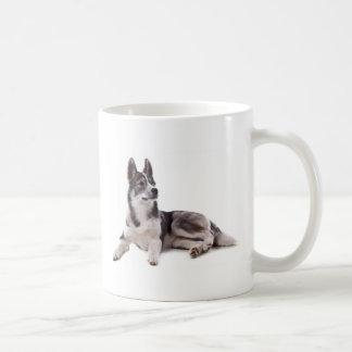 husky puppy mug