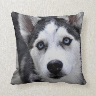 Husky Puppy Pillow