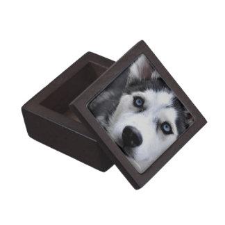Husky Puppy Premium Gift Box