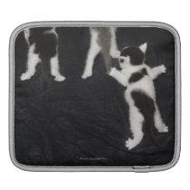 Husky Puppy Sleeve For iPads