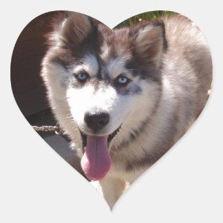 Husky Sam Heart Sticker