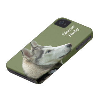 Husky Siberian dog photo custom iphone 4 case mate