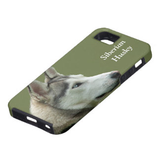 Husky Siberian dog photo custom iphone 5 case mate