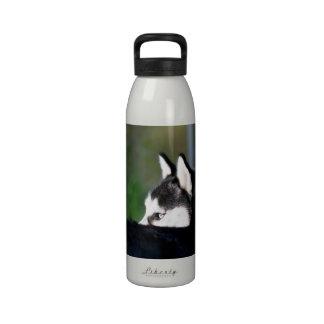 Husky siberiano botellas de agua reutilizables