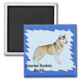Husky siberiano - azul con el diseño blanco del imán cuadrado